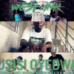 Madanon - Usisi Oyedwa ft. Babes Wodumo, Mampintsha & Dlala Thuk'zin